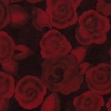 Rosenrot Cotton 64